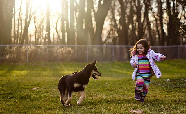 Empatia, brud isamo dobro, czyli dlaczego relacja dziecko pies jest taka wyjątkowa